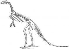 Vintage Laosaurus Image! - The Graphics Fairy