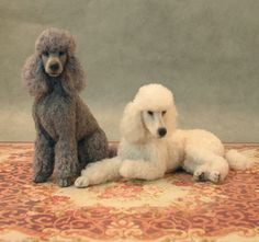 Pair of clipped standard poodles with wool coats in 1:12 scale by Kerri Pajutee - Photo Courtesy Kerri Pajutee  Copyright 2008 Used With Permission