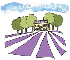 Seven Oaks Lavender Farm. Stroll through the lavender on a lovely day. (also has a u-pick)