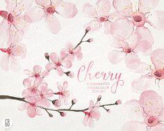 Watercolor cherry blossom, cherry tree, sakura, hand painted spring flowers, blossoms, clip art, watercolor invite, diy invitation, card