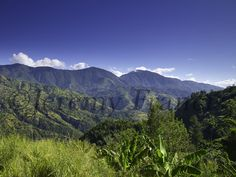 Blue Mountain, Mountain Range, Jamaica, Nature Photography, Photographs, Salt, Mountains, Gallery, Travel