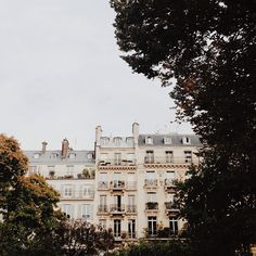 paris (nicole franzen)