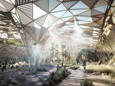 Projet de dune habitable : Réalisation de l'Université de la Technopole de Laâyoune au Maroc
