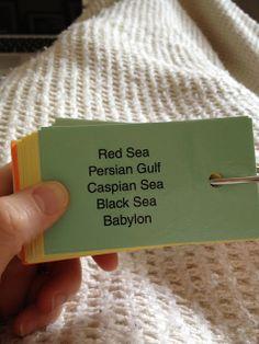Veritas Press Bible Cards Genesis through Joshua - 31 Cards Budget Free Shipping