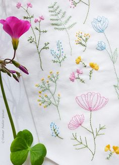 Embroidery Kit, Hand embroidery - Botanical flowers