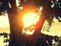 Por do Sol no MAM - Salvador - Bahia