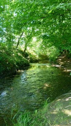 Pymmes Brook Trail, N11/N14, in London