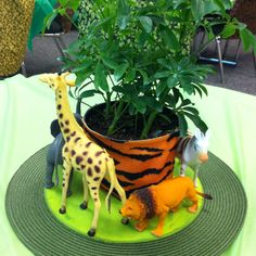 "Center pieces for staff lounge during teacher appreciation week. ""wild about teachers"""