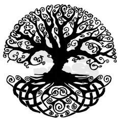Tree Of Life Bumper Sticker on CafePress.com