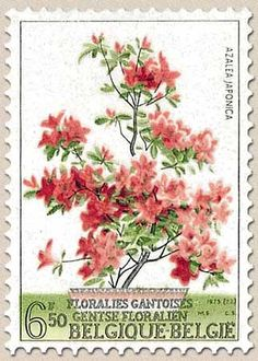Stamp: Flowers Exhibition Gent (Belgium) (Flowers Exhibition Ghent) Mi:BE 1751 Postage Stamp Art, Flower Stamp, Vintage Stamps, Tampons, Stamp Collecting, Belgium, Prints, Ephemera, Postcards