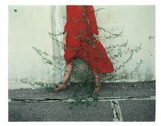 11 © Kate Barry, courtesy Gallois Montbrun et Fabi