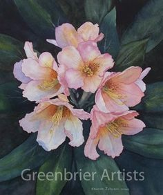 "jeanne brenneman art | Rhododendron"" 16 x 18 framed watercolor, $200. Prints available."