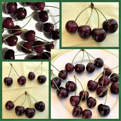 Süsse Kirschen! #edgarten #gartenblog #kirschen Collagen, Cherry, Fruit, Food, Eten, Meals, Cherries, Diet