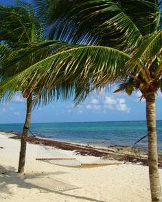 Bliss on the beach! Grand Cayman