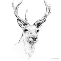 reindeer head - Google-søgning