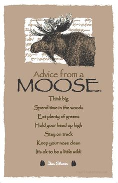 Spirit Totem Animals: #Advice from a #Moose.