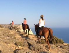 A ride with a view: Pissouri cliffs #thingstodoincyprus #cyprusactivity #horseriding #andros #pissouri https://plus.google.com/+PissouribayCyp/posts/fK2fKzbrfwA