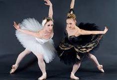 Imagini pentru swan lake story