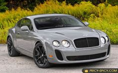 Image from http://www.pricy-spicy.com/wp-content/uploads/2010/11/2010-bentley-continental-supersports-cop.JPG.