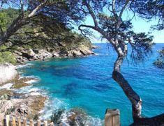 Rayol-Canadel-sur-Mer, Provence-Alpes-Côte d'Azur