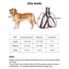 Dog leash pet walking training leash harness collar lead strap 5ft//10ft//20ft   G