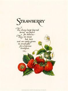~ Strawberry Lane Cottage ~