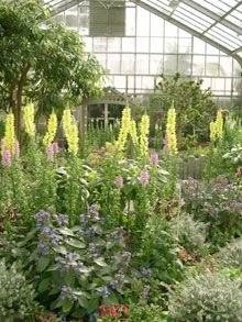Brookside Gardens - Conservatory Spring Display - http://www.montgomeryparks.org/brookside/#