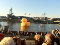 Rubber Duck Project comes to Pittsburgh