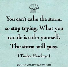 You can't calm the storm. so stop trying. What you can do is calm yourself. The storm will pass. -Timber Hawkeye God can calm the storm, stop trying to fix it yourself. Words Quotes, Wise Words, Me Quotes, Peace Quotes, Mentor Quotes, Calm Quotes, Happiness Quotes, Truth Quotes, Strong Quotes