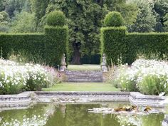 How to choose which hedge will be right for your garden - a hedge for wildlife, for privacy, or hedges as a style choice or to add structure to your garden Beautiful Landscapes, Beautiful Gardens, Landscape Design, Garden Design, Landscape Architecture, Hedges Landscaping, Topiary Garden, Topiaries, France Landscape