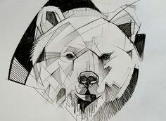 bear (Drawing),  28x20 cm by Matteo Cascetti