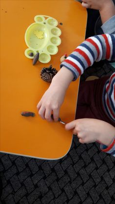 Plastic Cutting Board, Hedgehog, Activities For Kids, Children Activities, Hedgehogs, Kid Activities, Petite Section, Kid Crafts