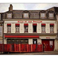 La Charité sur Loire dans la Nièvre est surnommée la Ville du Livre .Il y a de nombreuses librairies avec des livres anciens ,des mots ,des phrases sur de nombreux murs !    J'ai trouvé amusant cet hôtel qui évoque l'activité du livre ,je vous joins une photo si cela vous dit .