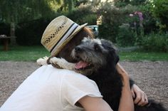 dog hug - Pesquisa Google