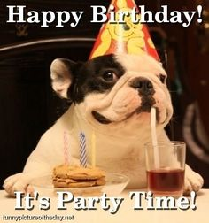 Happy Birthday Funny Dog Party | http://justforgagscollections.blogspot.com