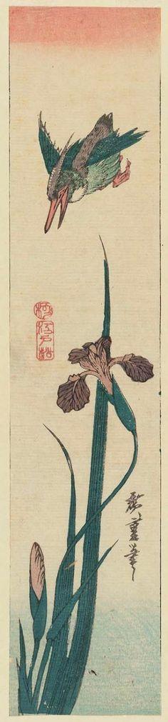 Kingfisher and iris - Japanese, Edo periode - by Utagawa Hiroshige
