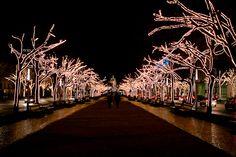 Weihnachtsbeleuchtung unter den Linden, Berlin Christmas lights in Berlin