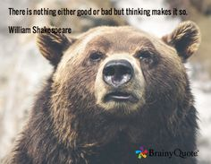 There is nothing either good or bad but thinking makes it so. William Shakespeare