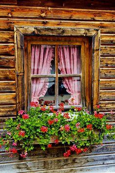 Pictures of Germany Window Box Flowers, Window Boxes, Flower Boxes, Window Sill, Old Windows Painted, Beautiful Flowers, Beautiful Pictures, Red Cottage, Garden Windows