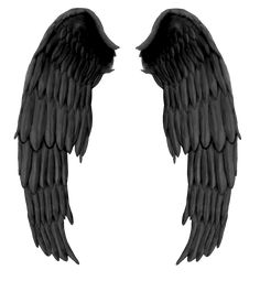 Demon Wings Photo:  This Photo was uploaded by VenomousML. Find other Demon Wings pictures and photos or upload your own with Photobucket free image and ...