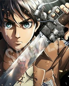 Attack on Titan ( Shingeki no Kyojin )