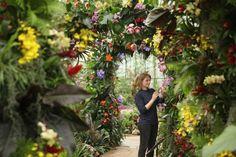 10 meraviglie da non perdere ai Giardini Botanici Reali di #Londra #Giardini #viaggi