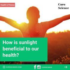 Health Benefits Immune System Vitamins, Radiation Exposure, Serotonin Levels, Prostate Cancer, Light Therapy, Health Benefits, Health Fitness, Fitness, Health And Fitness