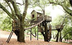 Play houses never got used to their full extent when I was younger; so to prevent that from being the case, I plan to make this my full time home