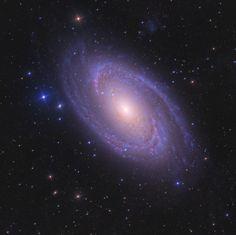 M81 Bodes Galaxy js