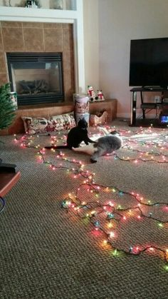 Christmas decorating with Charlie and Olivia