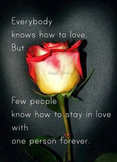 Everybody knows how to love but few people know how to stay in love with one person forever   Inspirational Quotes