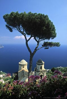 Image detail for -villa rufolo, ravello, amalfi coast, italy