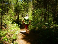 Hiking In Sedona, Arizona Visit Sedona, Sedona Arizona, Utah, Road Trip, Hiking, Vacation, Fork, Places, Travel