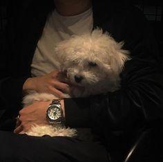 black aesthetic grunge korean soft minimalistic kawaii cute g e o r g i a n a : a e s t h e t i c s Night Aesthetic, Aesthetic Photo, Aesthetic Pictures, Aesthetic Grunge, O Castor, Animals And Pets, Cute Animals, Dark Feeds, Donna Tartt